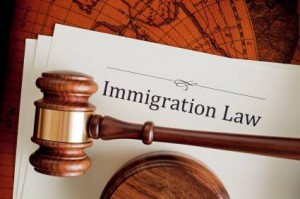 """""""Immigration Law"""" on a legal document with a gavel on top"""